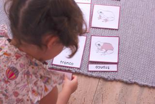 CARTÃO DE 3 PARTES (SAPOS)