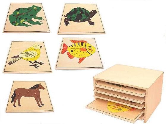 Quebra - cabeça Zoologia