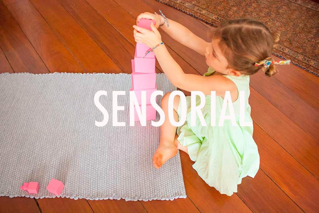 areas-do-conhecimento-sensorial