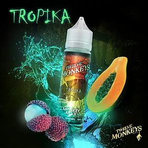 Tropica | טרופיקה