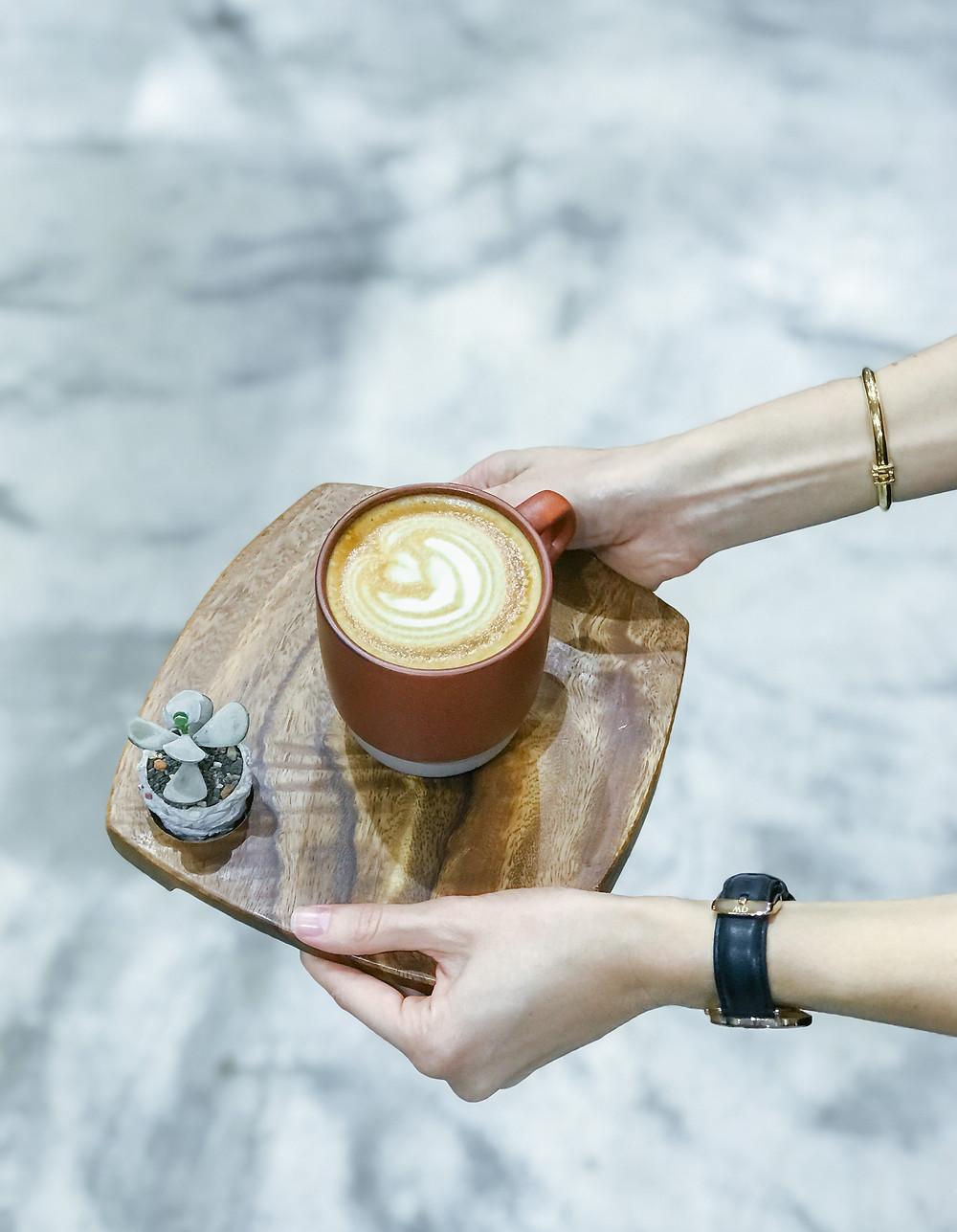 有肉 SUCCULAND Succulent & Gift (Coffee Sind)