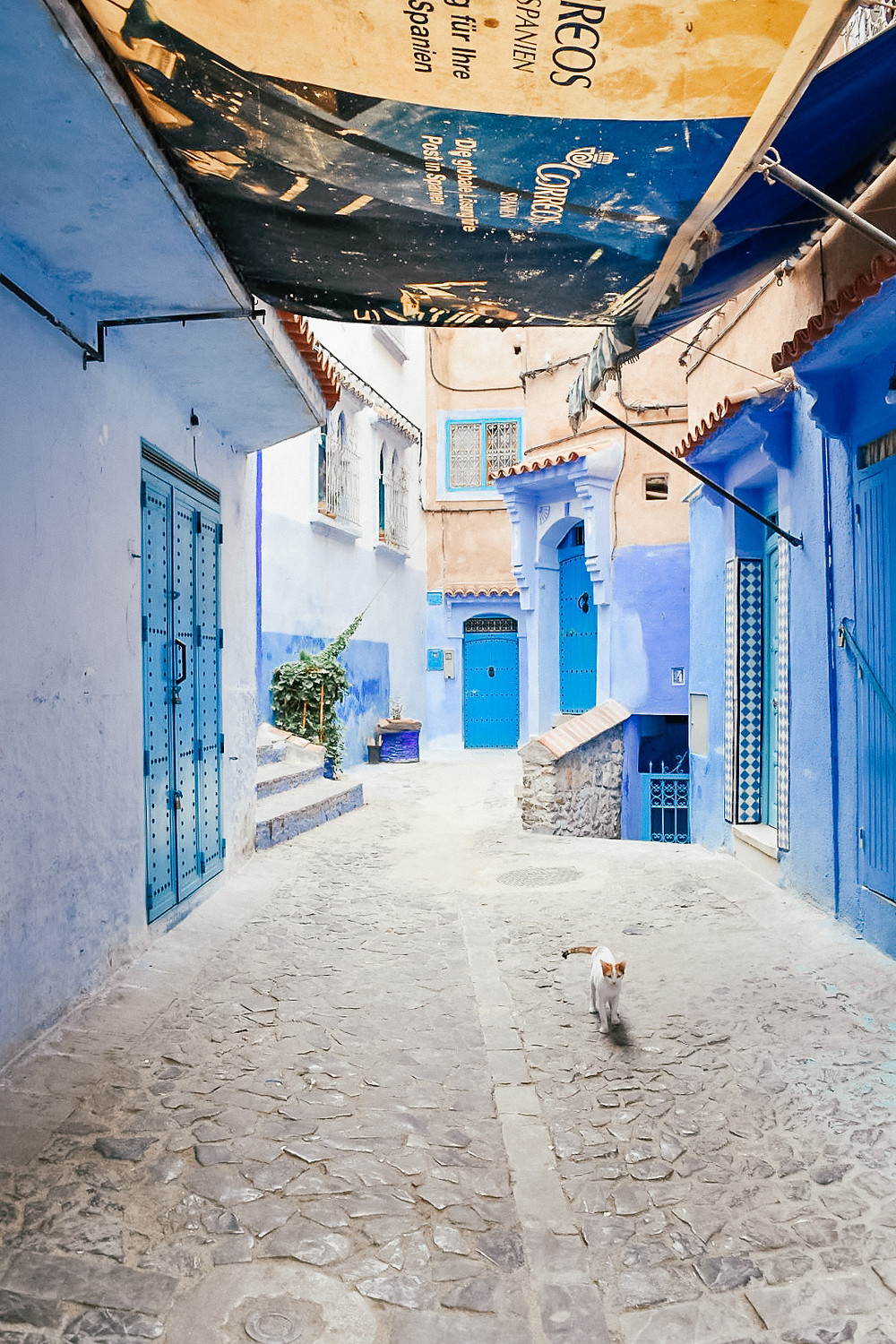 Chefchaouen | A Guide to Morocco | A Style Alike