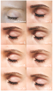 Eyebrows Microblading Process │ Before and After │ A Style Alike │ Taipei