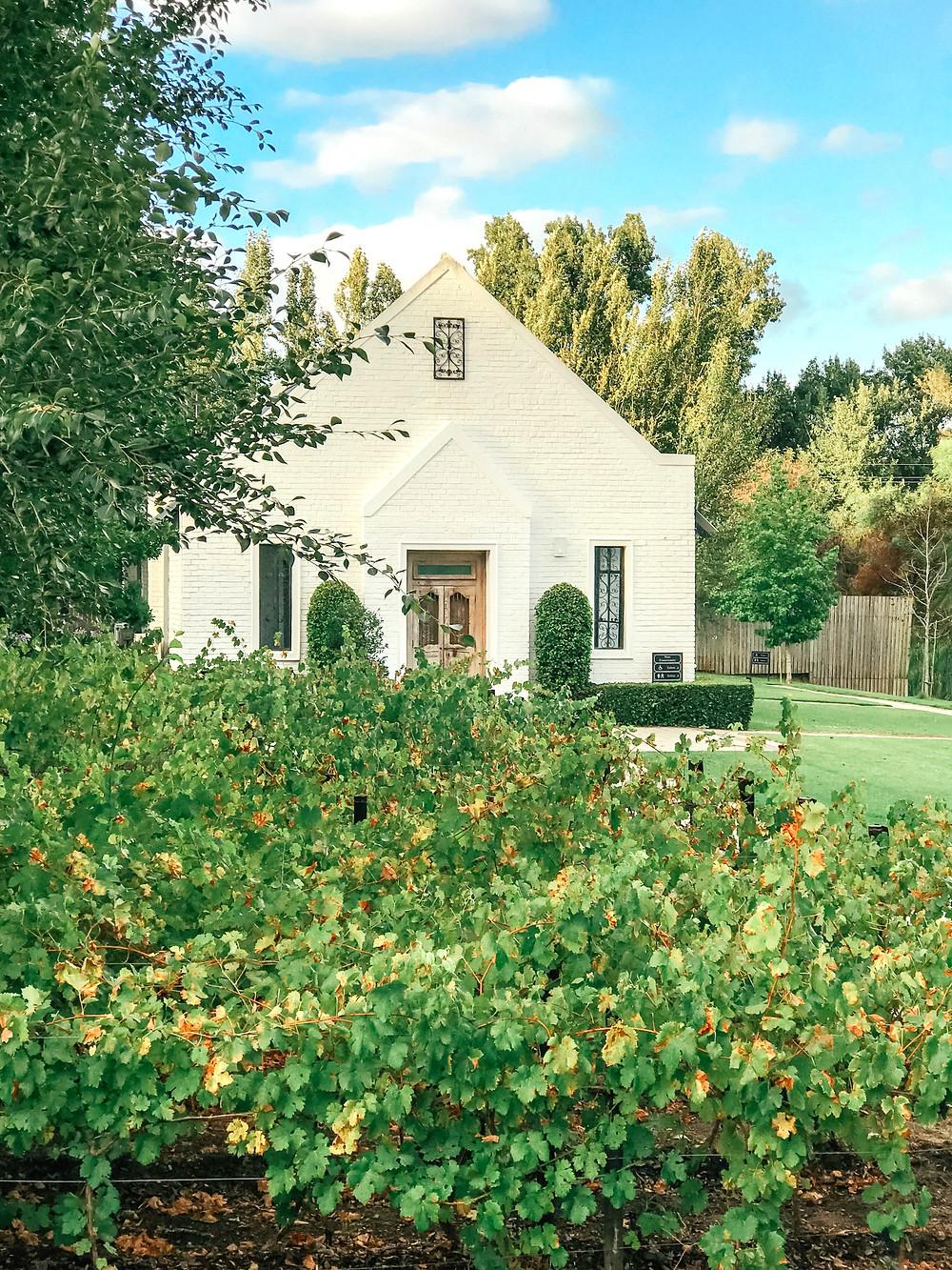 Brenaissance Wine & Stud Estate l South Africa Winelands l A Style Alike l Travel