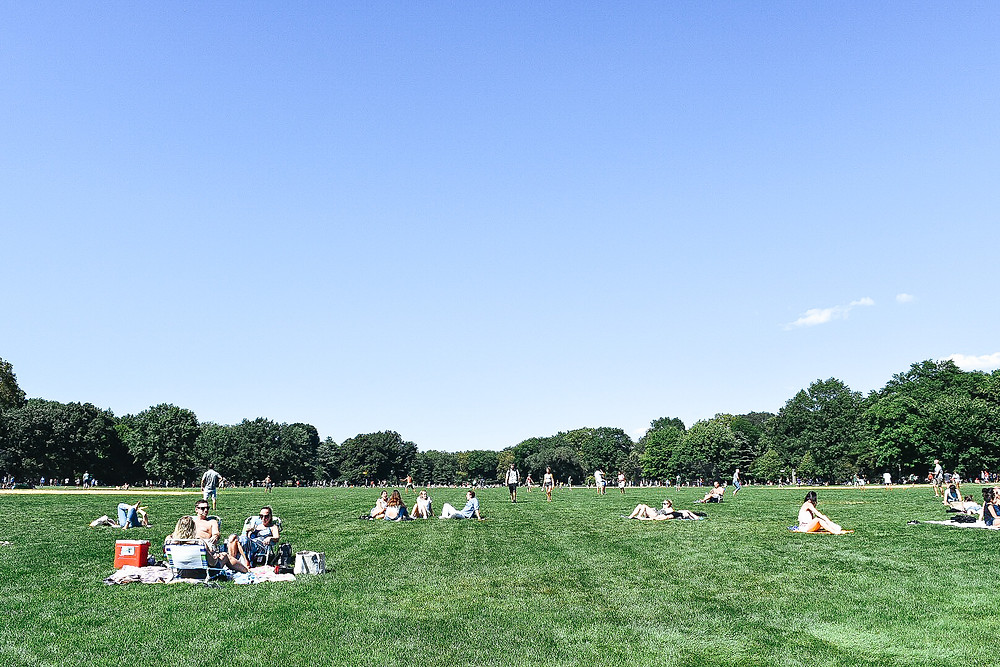 Great Lawn (Central Park)