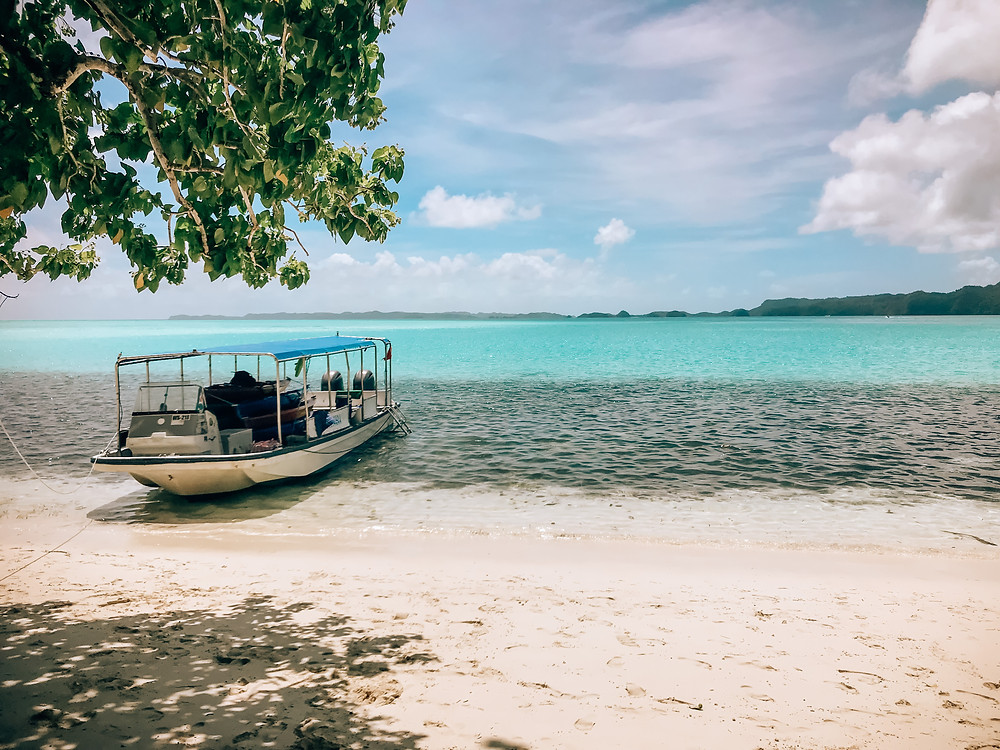 Sam's Tours | A Guide to Palau | A Style Alike