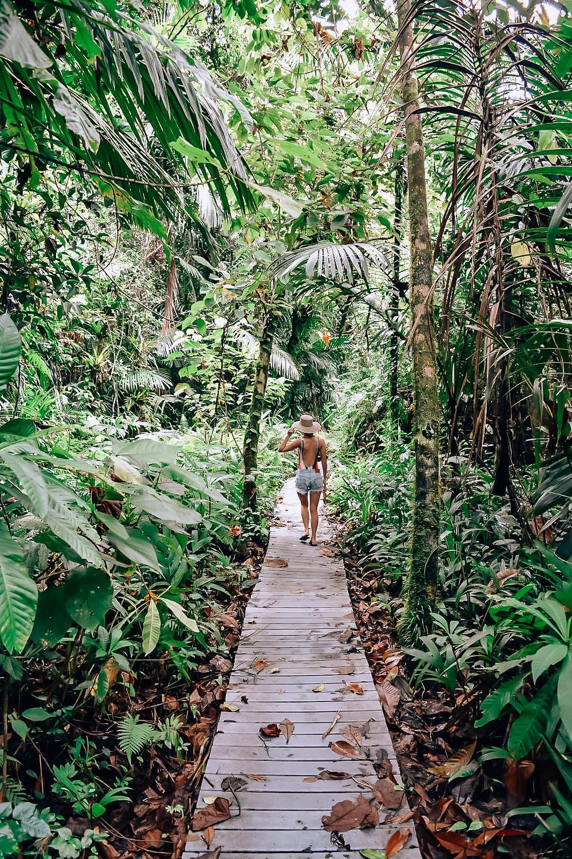 Ngardmau | Babeldoab | A Guide to Palau | A Style Alike