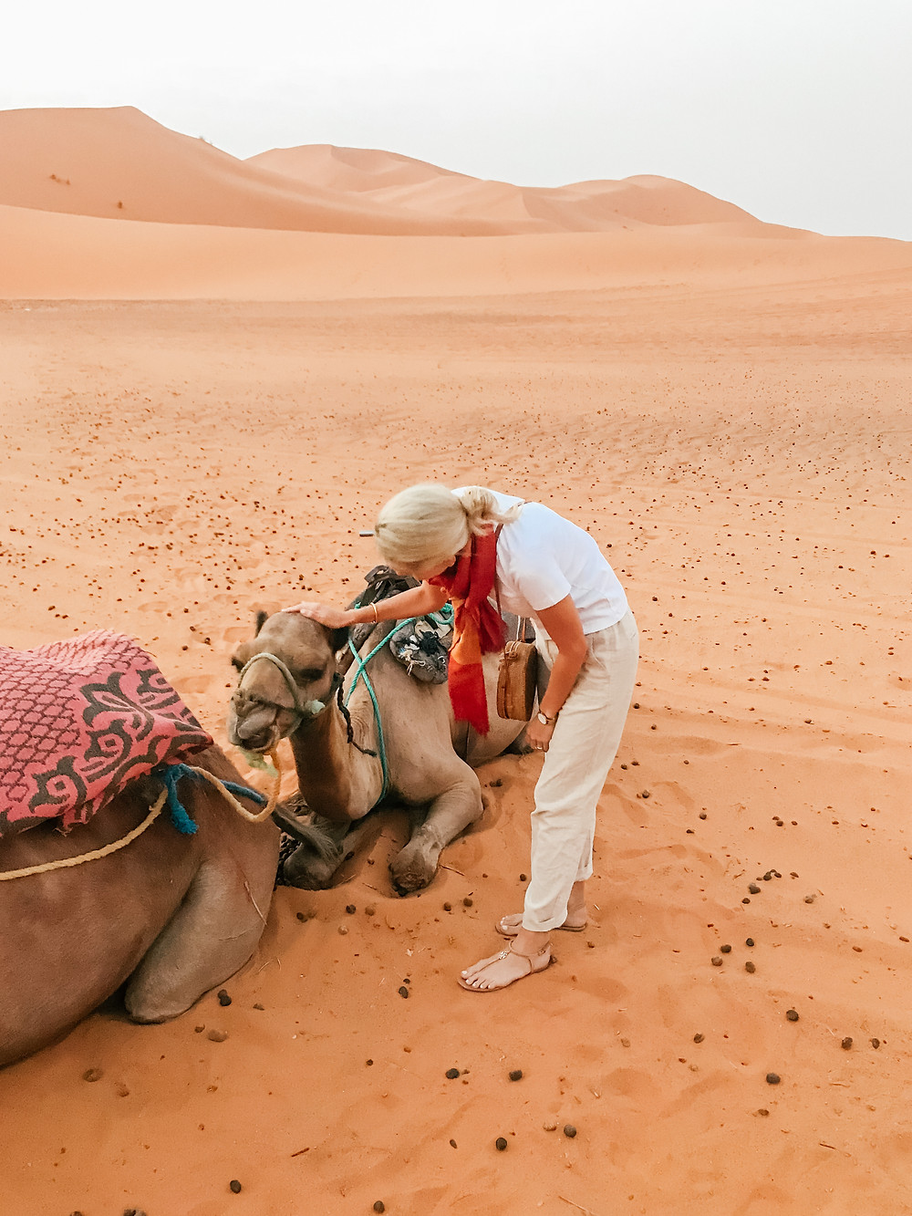 Camel Trek | Sahara Desert | A Guide to Morocco | A Style Alike
