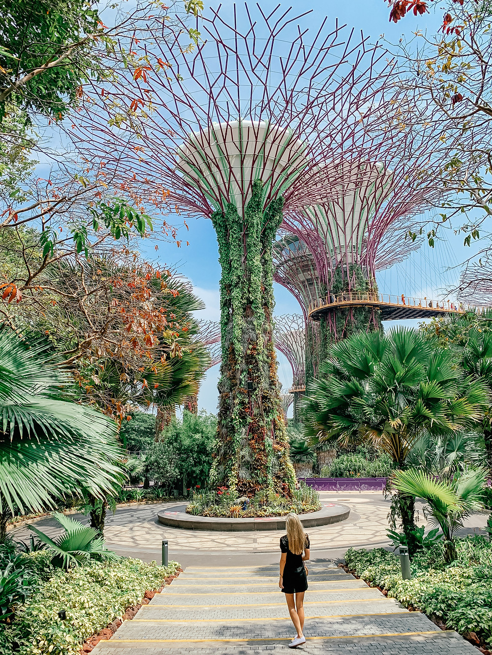 A Guide to Singapore | Supertree Grove Gardens by the Bay | A Style Alike