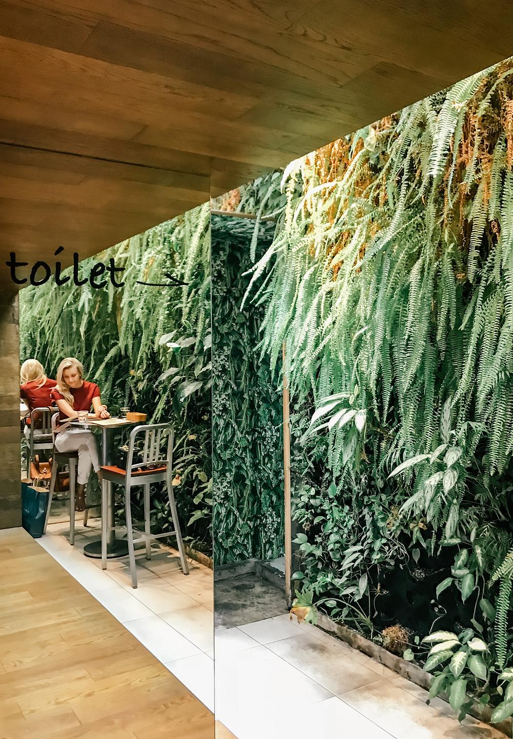 Saladay l A Style Alike l Food l Taipei Cafe