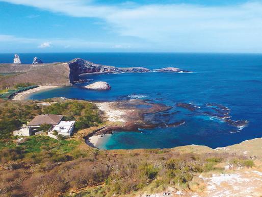 La Riviera Nayarit elegida para el avistamiento de aves