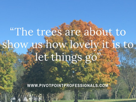 What Will You Let Go of This Fall?