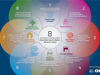 8 principios rectores de la transformación digital del sector salud: Una Guía para las Américas.