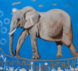 Blue Elephant 17 January 2015.jpg