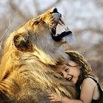 lion-3012515_1920.jpg
