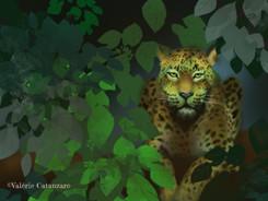 Wild Panther