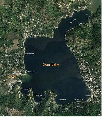 deer lake 2016 google earth (2).jpg