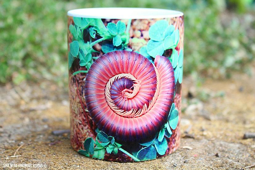 African dusky grey millipede - 11oz mug