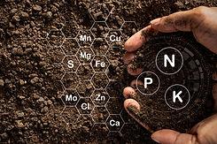 fertile-loam-soil-suitable-planting.jpg