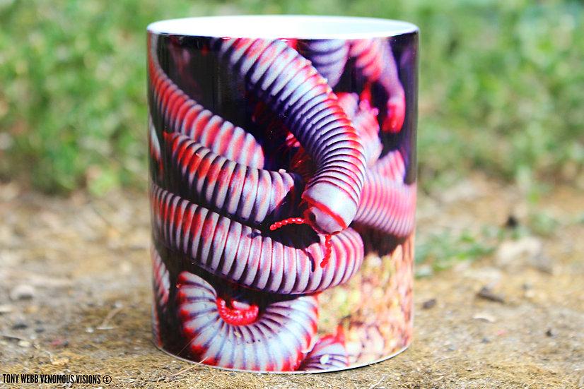 Atopochetus dollfusii - Rainbow millipede 11oz coffee mug