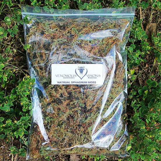 Natural Sphagnum moss for sale
