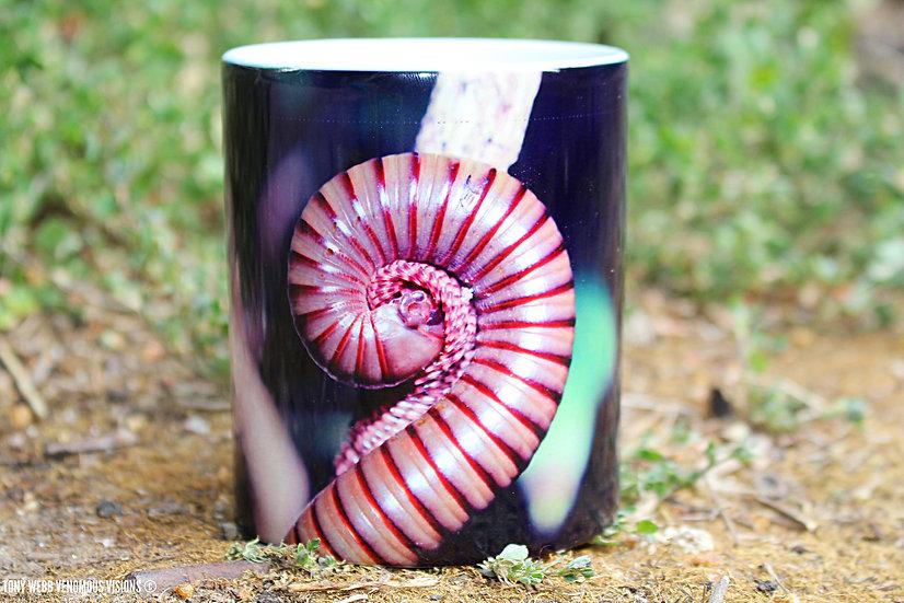Telodeinopus aouti - Giant olive millipede 11oz coffee mug