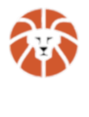 ZOR Basketball Logo_edited.png