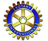 Logo Shine.JPG