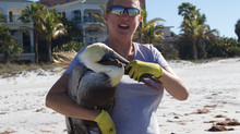 VIDEO: Birds Given A 2nd Chance