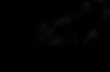 Roar Logo-25.png