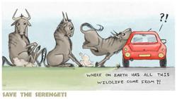 Save the Serengeti
