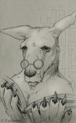 Kangaroo Librarian
