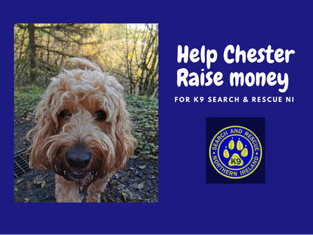 CHESTER IS WALKING 100 MILES THIS JUNE!