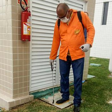 Tratamento localizado contra formigas em condomínio