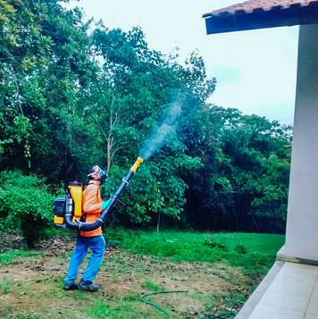 Controle Vetorial contra Dengue