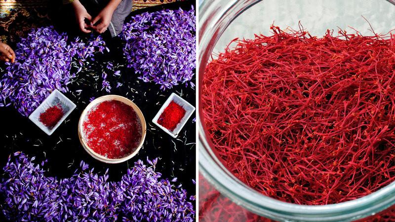 saffron stands