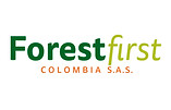 forest first colombia.jpg