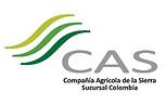 CAS.jpg