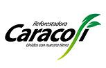 CARACOLI.jpg