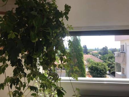בבלעדיות / דירת גג עם נוף פסטורלי במיקום מצוין