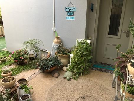 דו משפחתי בשכונת אחוזה ירוקה בכרכור