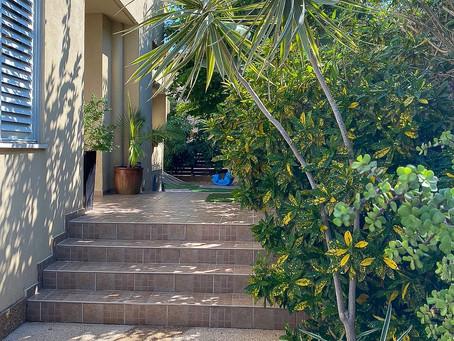 בבלעדיות / בסמטה שקטה בשכונת יפה נוף מוצע למכירה בית על מגרש של כ 250 מ״ר