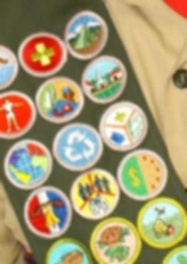 merit_badges.jpg