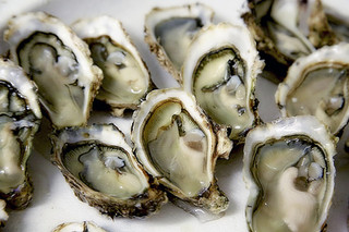 Narooma Chamber says world is its oyster