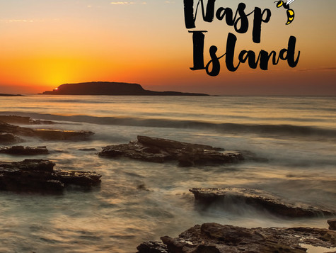 Wasp Island release debut album