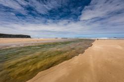 Gold-Dave Kemp-Sand Wash