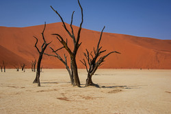 Image of the night-Rog Geraghty-Namibia.