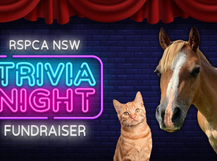 RSPCA NSW Trivia Night Fundraiser