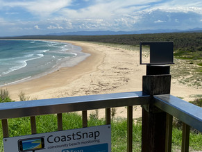 Beach monitoring sees citizen science a snap