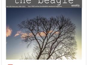 Beagle Weekender of February 19th 2021